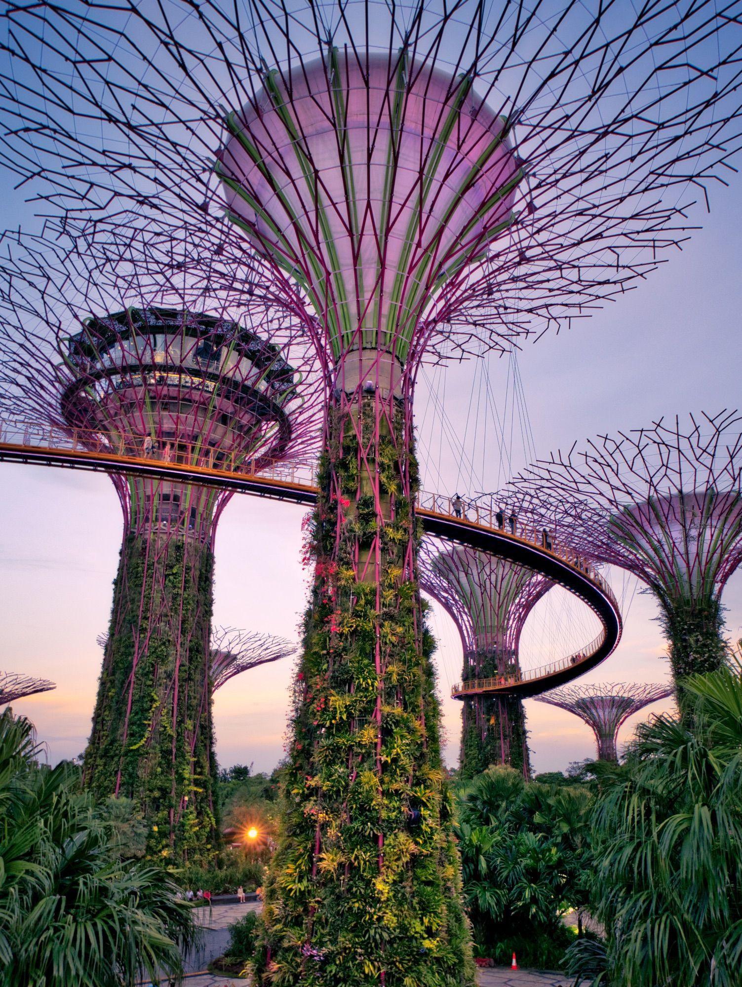 biomimicry in design