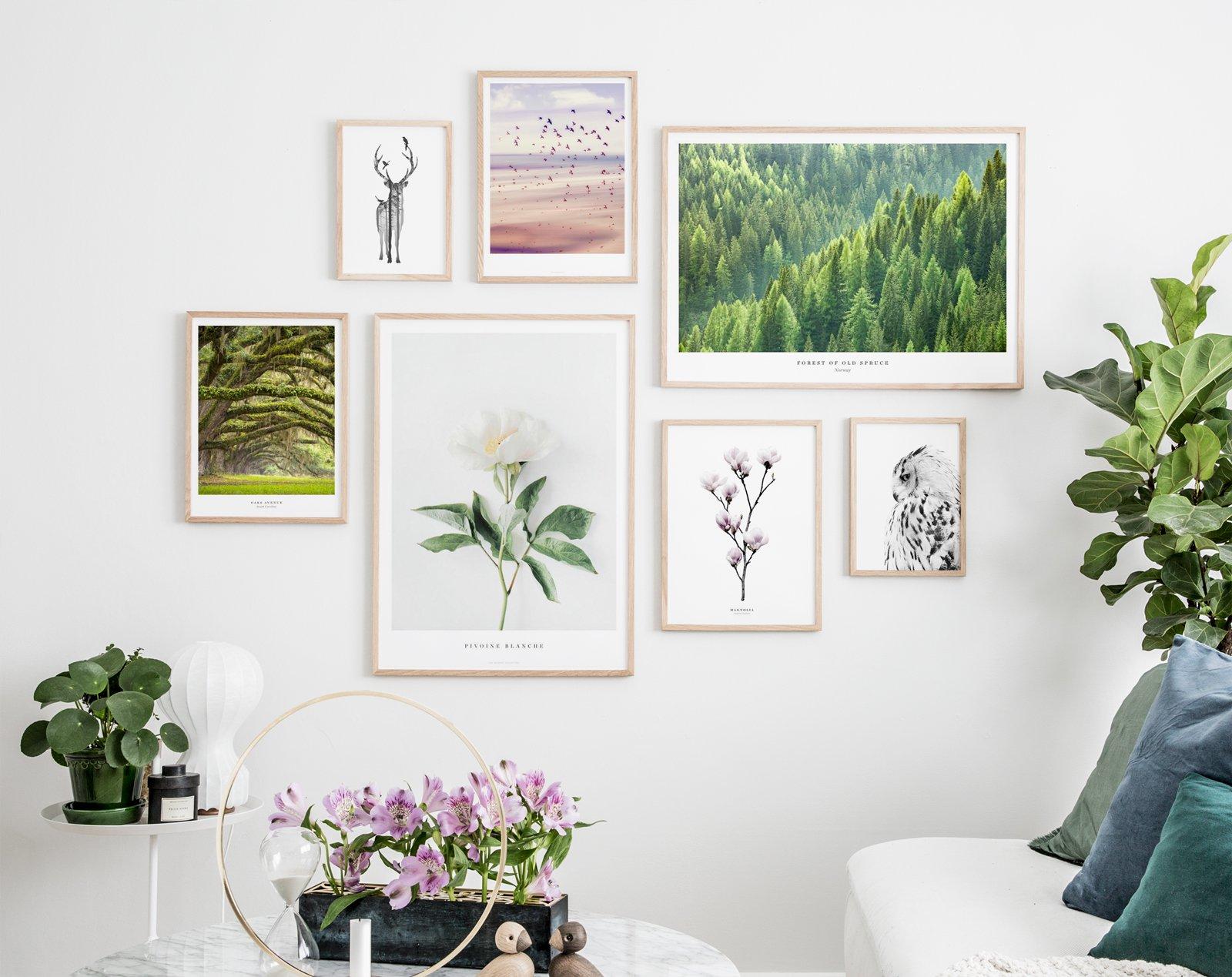 Random gallery wall